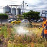 Municipalidad continúa con el mantenimiento de zonas verdes